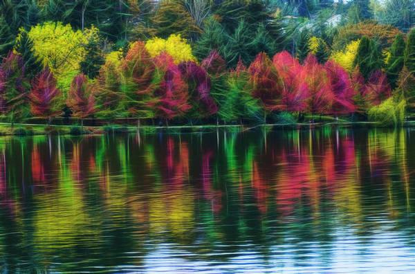 Autumn At Green Lake Seattle Poster