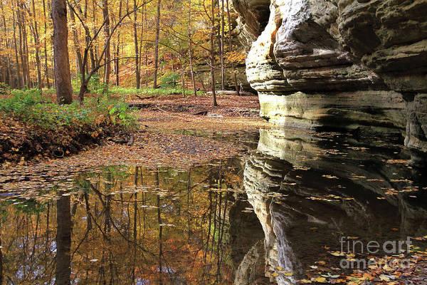 Autumn Comes To Illinois Canyon  Poster