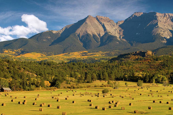 Autumn Hay In The Rockies Poster