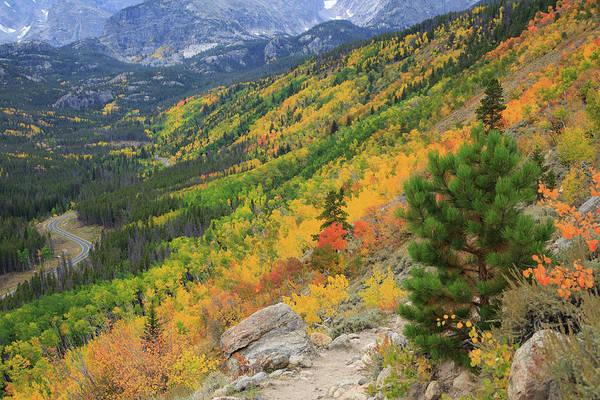 Autumn On Bierstadt Trail Poster