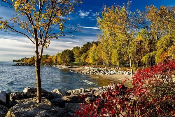 Autumn Scene Lake Ontario Canada Poster