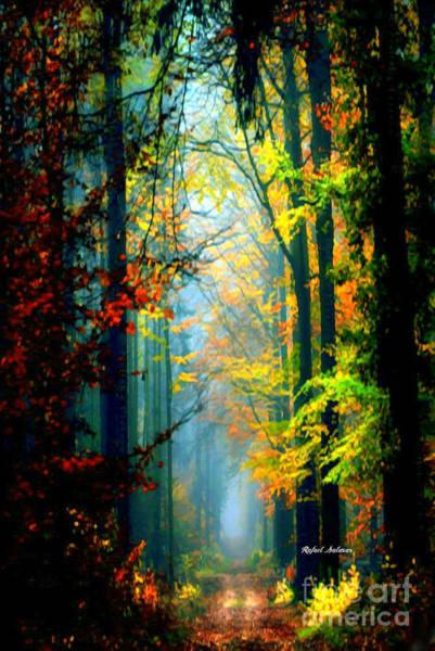 Autumn Trails In Georgia Poster