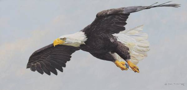 Poster featuring the painting Bald Eagle by Alan M Hunt
