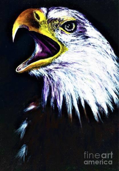 Bald Eagle - Francis -audubon Poster
