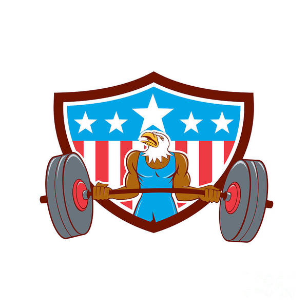 Bald Eagle Weightlifter Barbell Usa Flag Poster