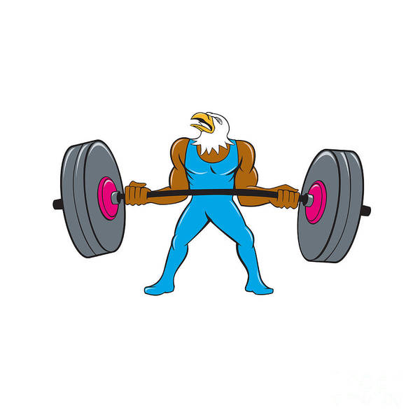 Bald Eagle Weightlifter Lifting Barbell Cartoon  Poster