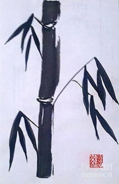 Bamboo In Black And White Poster