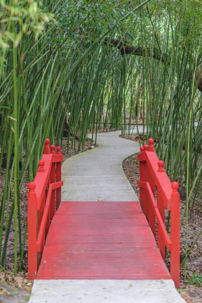 Bamboo Path Through A Red Bridge Poster