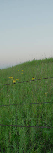 Barb Wire Prairie Poster
