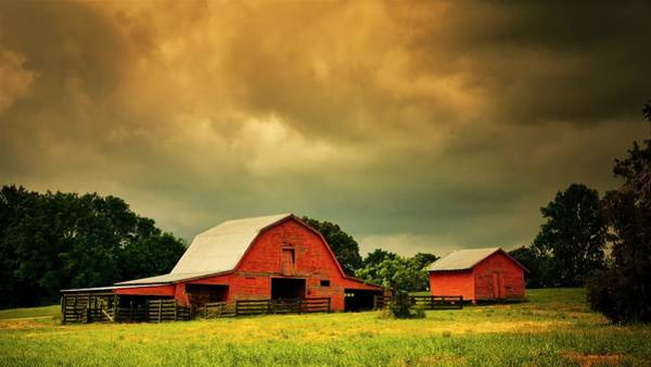 Barn In The Usa, South Carolina Poster