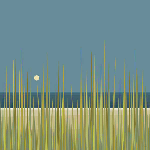 Beach Grass And Blue Sky Poster