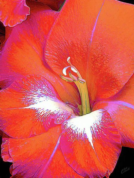 Big Glad In Orange And Fuchsia Poster