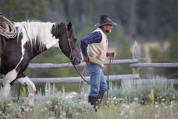 Big Horn Cowboy Poster