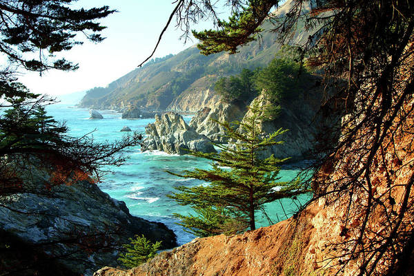 Big Sur Vista Poster