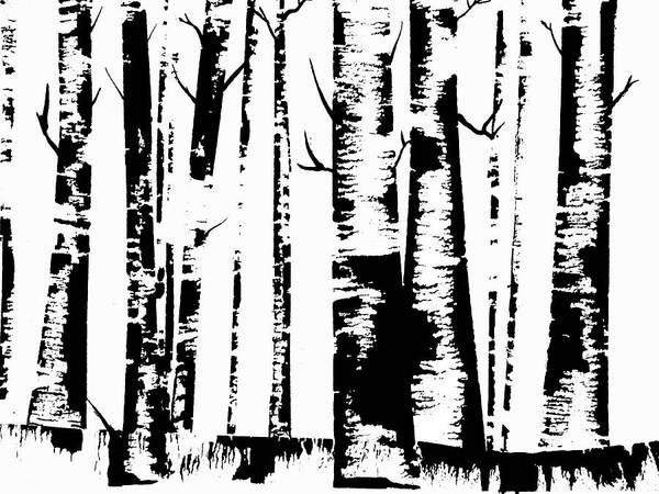 Birch Forest Black Poster