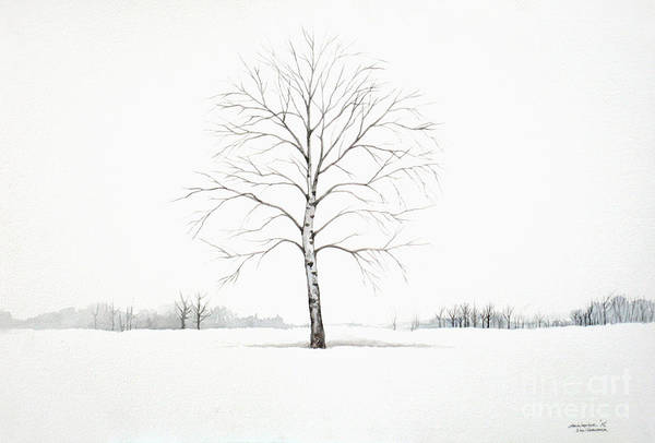 Birch Tree Upon The Winter Plain Poster