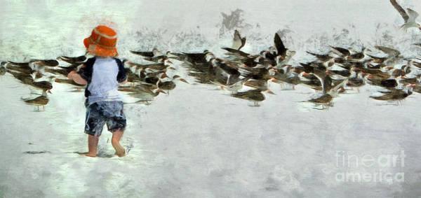 Bird Play Poster