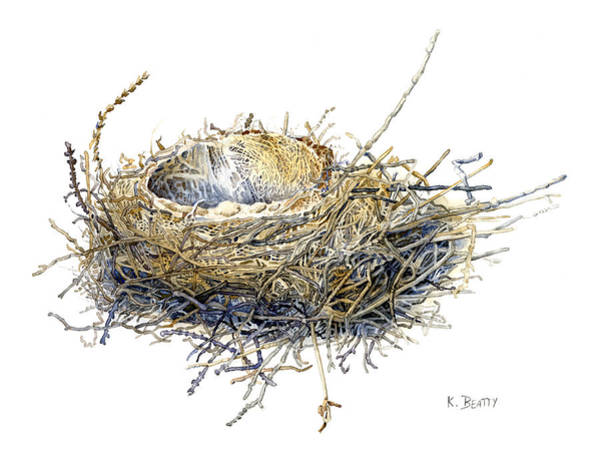Bird's Nest Watercolor Painting Poster