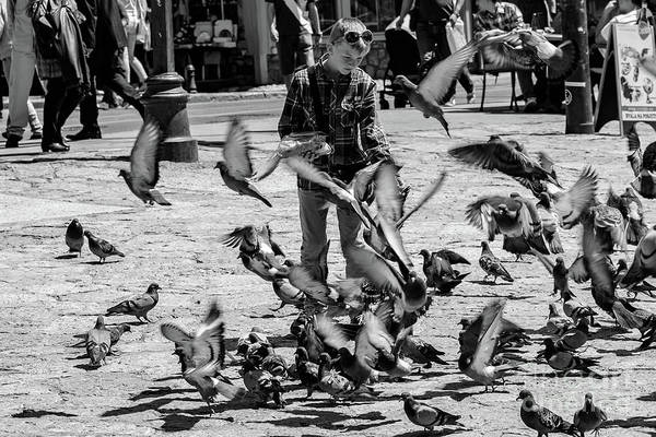 Black And White Of Boy Feeding Pigeons In Sarajevo, Bosnia And Herzegovina  Poster