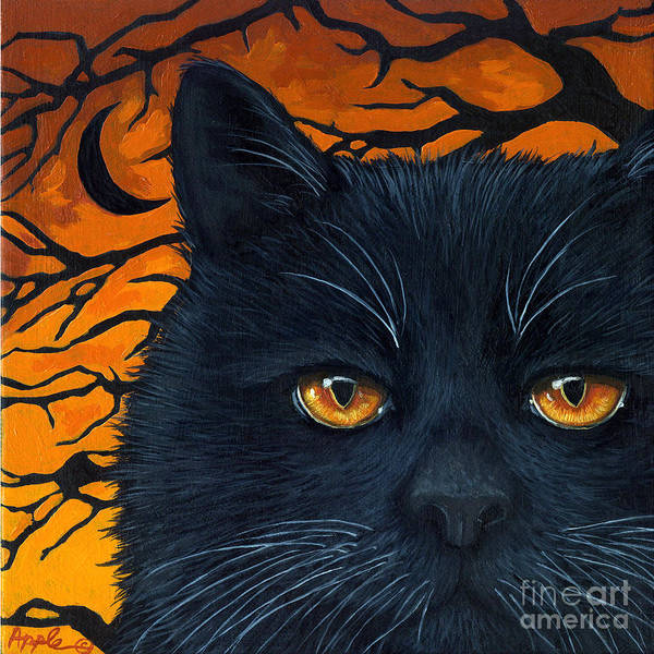 Black Cat And Moon Poster