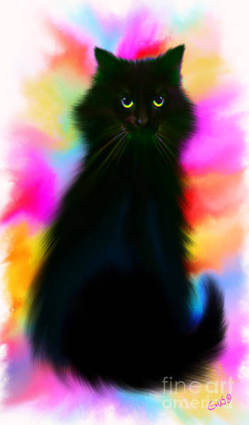 Black Cat Rainbow Sky Poster