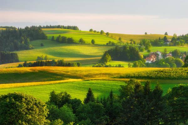 Black Forest Landscape Poster