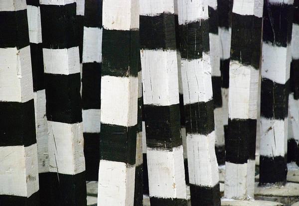 Blanco Y Negro Poster