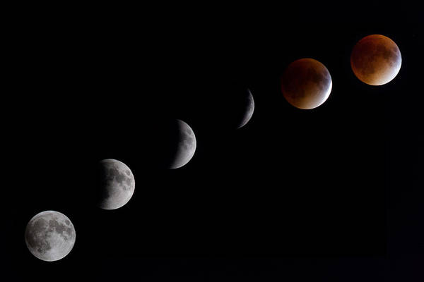 Blood Moon Lunar Eclipse Poster