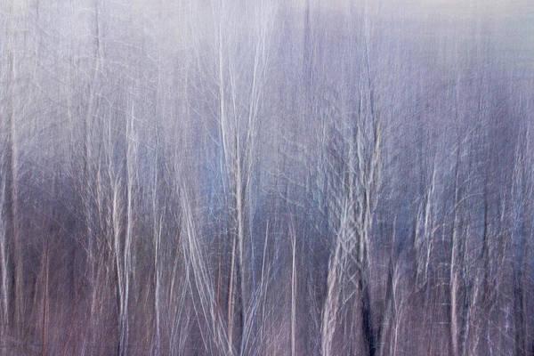 Blue Brush Poster