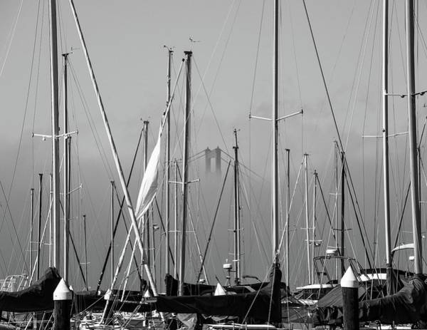 Boats And A Bridge On The Bay Poster