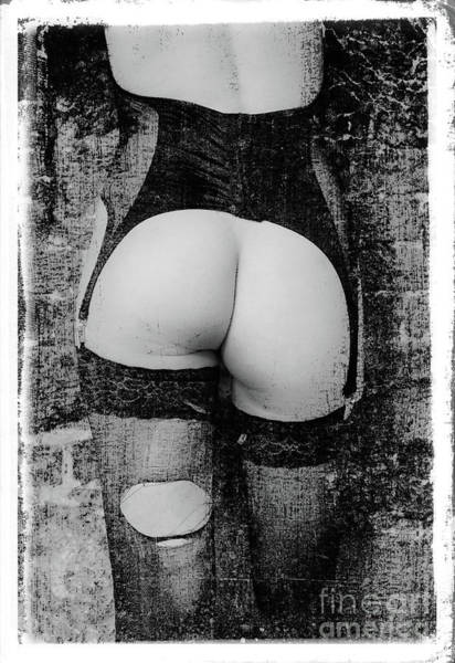 Body #3681 Poster