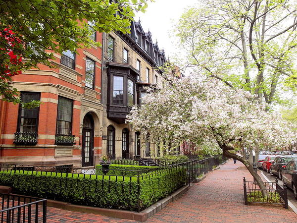Boston Spring Poster