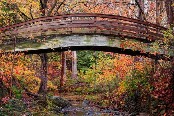 Botanical Gardens Arched Bridge Asheville During Fall Poster