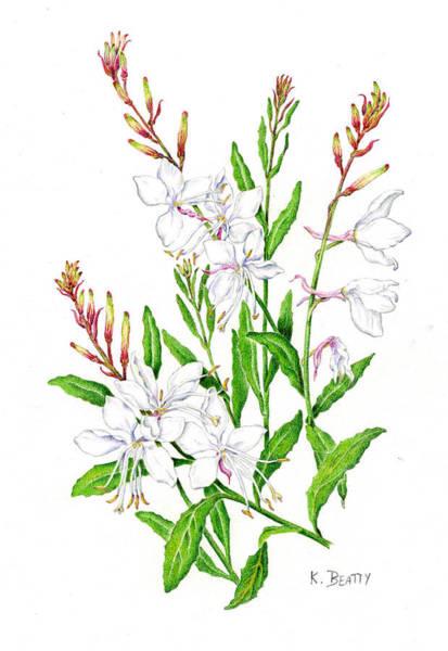 Botanical Illustration Floral Painting Poster