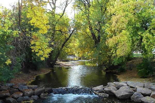 Boulder Creek Tumbling Through Early Fall Foliage Poster