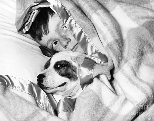 Boy And Dog Hiding Under Blanket Poster
