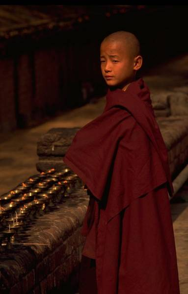 Poster featuring the photograph Boy Buddhist In Bodh Gaya by Travel Pics