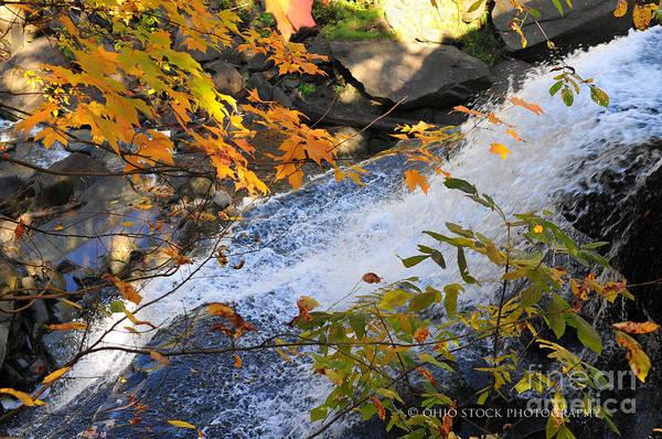 D30a-18 Brandywine Falls Photo Poster