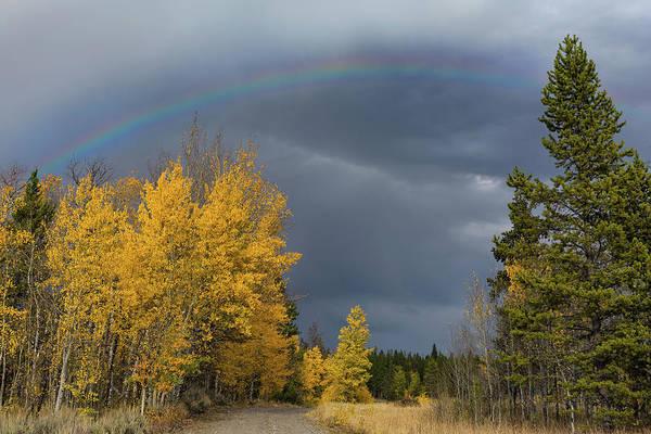 Bridger Teton Rainbow Poster