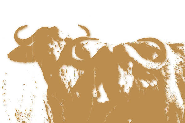 Buffalo 3 Poster