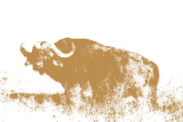 Buffalo 4 Poster