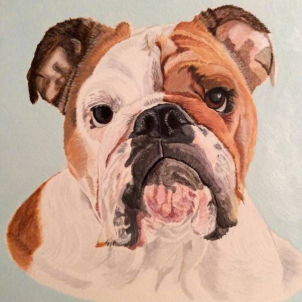 Bulldog Beauty Poster
