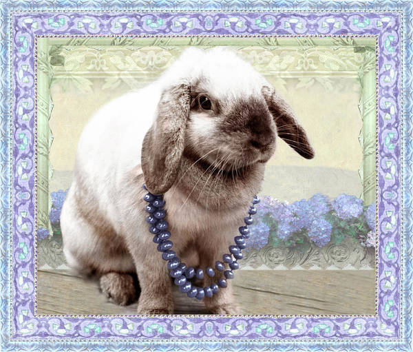 Bunny Wears Beads Poster
