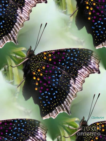 Butterfly Sunbath #2 Poster