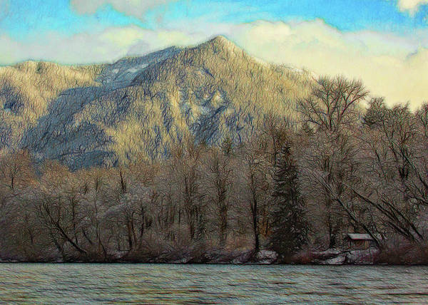 Cabin On The Skagit River Poster
