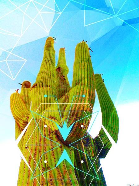 Cacti Embrace Poster