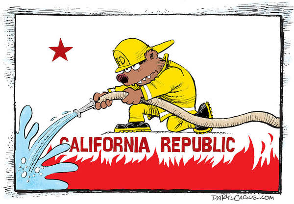 California Firefighter Flag Poster
