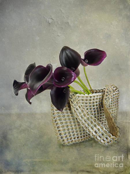 Calla's Bag Poster