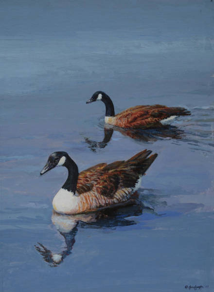 Canadian Geese Poster