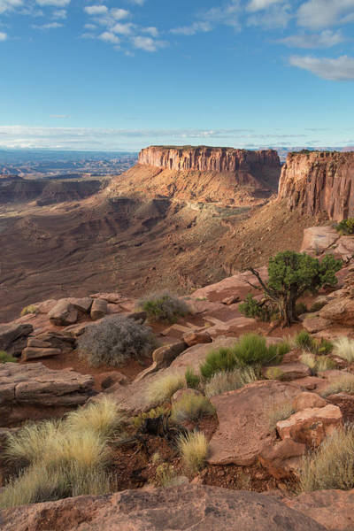 Canyonlands View Poster